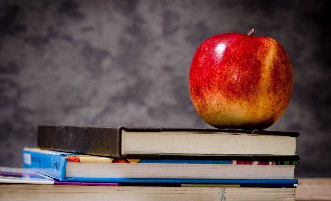 How to Advance Your Career as a School Teacher
