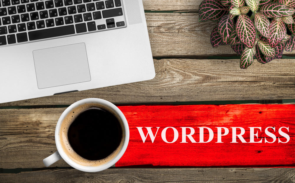 How to Create a Service Section for WordPress Website